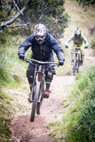 Jinetes de la bici de montaña en Mt Buller Imagenes de archivo