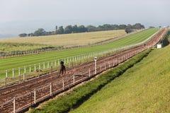 Jinetes de la carrera de caballos que entrenan a la pista Imagenes de archivo