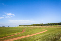Jinetes de la carrera de caballos que entrenan a paisaje Fotografía de archivo
