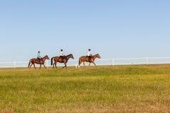 Jinetes de las mujeres de los caballos Foto de archivo libre de regalías