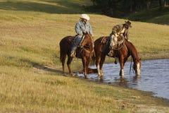 Jinetes de lomo de caballo en el agujero de agua Imagenes de archivo