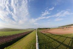Jinetes de los caballos de raza que entrenan a paisaje Fotografía de archivo
