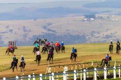 Jinetes de los caballos de raza que entrenan a paisaje Foto de archivo libre de regalías