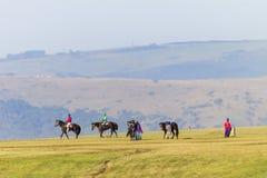 Jinetes de los caballos de raza que entrenan a paisaje Imágenes de archivo libres de regalías