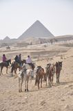 Jinetes del caballo alrededor de las pirámides Fotografía de archivo