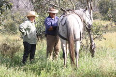 Jinetes del caballo de los pares Imagen de archivo libre de regalías