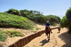 Jinetes del caballo en el camino de la arena Imagen de archivo