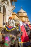 Jinetes del elefante en Amber Fort cerca de Jaipur, la India Imágenes de archivo libres de regalías