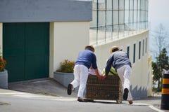 Jinetes del trineo largo que mueven el trineo del bastón cuesta abajo en las calles de Funchal, isla de Madeira Fotos de archivo