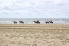 Jinetes en caballos en la playa Fotos de archivo