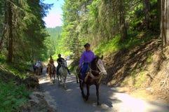 Jinetes en el camino de la montaña Imágenes de archivo libres de regalías