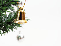 Jingle bell hanged on green christmas pine tree branch  on white background Royalty Free Stock Image