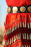 Jingle dress details royalty free stock image