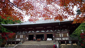 Jingo-ji is a Buddhist temple in Kyoto. It stands on Mount Takao to the northwest of the center of the city stock video footage