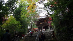 Jingo-ji is a Buddhist temple in Kyoto. It stands on Mount Takao to the northwest of the center of the city stock video