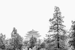 Jingshan Park Royalty Free Stock Image
