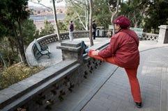 Jingshan Park Stock Images