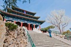 Jingshan parkerar Arkivfoton