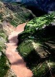jinsha oazy nabrzeże Zdjęcia Stock