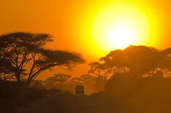 Jipe do safari que conduz através do savana Imagens de Stock