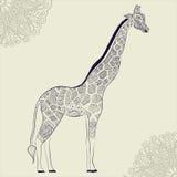 Jirafa adulta hermosa Ilustración drenada mano Fotos de archivo