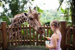 Jirafa de alimentación de la familia en parque zoológico  Animales del reloj de los niños poco imagenes de archivo