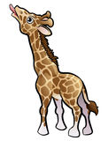 Jirafa Safari Animals Cartoon Character Imagen de archivo