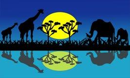 Jirafa y elefantes en África cerca del agua - vector de las imágenes ilustración del vector