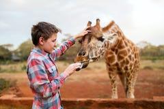 Jirafas de alimentación del muchacho joven en África Fotos de archivo