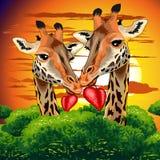 Jirafas en amor en el ejemplo africano salvaje del vector del día de la tarjeta del día de San Valentín s de la sabana libre illustration
