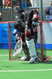 Jiri Malina - box lacrosse Stock Image