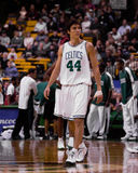 Jiri Welsch Boston Celtics Royaltyfria Bilder