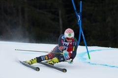 JITLOFF Tim (USA). Alta Badia, ITALY 22 JITLOFF Tim (USA) competing in the Audi FIS Alpine Skiing World Cup MEN'S GIANT SLALOM Royalty Free Stock Photos