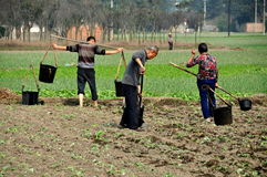 Jiu Chi Town, China: Farmers in Field Royalty Free Stock Photo