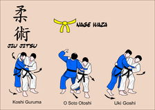Jiu Jitsu黄色传送带 库存图片