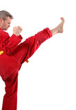 Jiu-jitsu_1. Jiu-jitsu martial arts - front kick, side view Royalty Free Stock Images