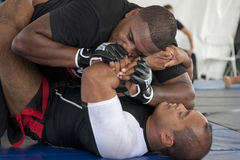 Jiu Jitsu Fotografia de Stock