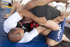 Jiu Jitsu Royalty Free Stock Photo