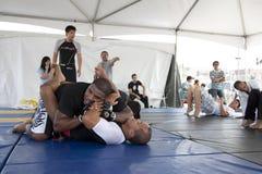 jiu jitsu Στοκ φωτογραφίες με δικαίωμα ελεύθερης χρήσης