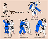 Jiu Jitsu brunt bälte stock illustrationer