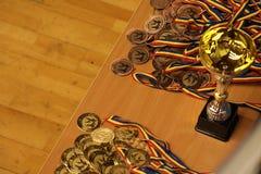 Jiu Jitsu medale i trofeum przy Rumuńskim mistrzostwem, juniory, Maj 2018 Obraz Royalty Free