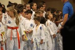 Jiu Jitsu wojownicy przygotowywający dla trenować Obraz Royalty Free
