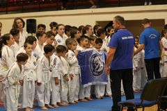 Jiu Jitsu wojownicy zespalają się gotowego dla trenować Zdjęcia Stock