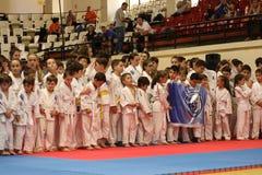 Jiu Jitsu wojowników * Fotografia Royalty Free