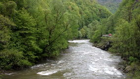 Jiu river stock video