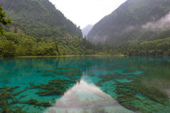 Jiuzhai谷国家公园五颜六色的湖  免版税库存照片