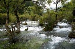 Jiuzhai Valley Royalty Free Stock Image