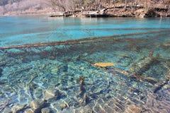 Jiuzhaigou五颜六色的美丽的湖在冬天 免版税库存图片