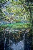 Jiuzhaigou国家公园,中国 库存照片