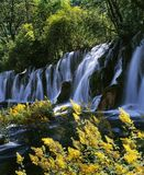 jiuzhaigou瀑布 免版税库存照片